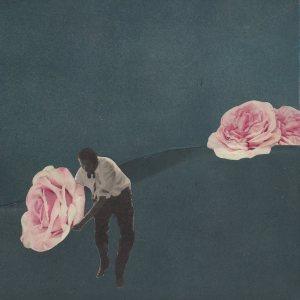 rosegarden-by-papiertaenzerin